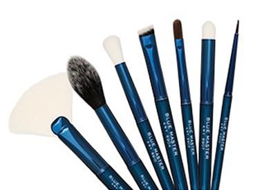 Blue Master Brushes
